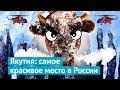 Якутия: на вертолете к Ленским столбам и бизонам