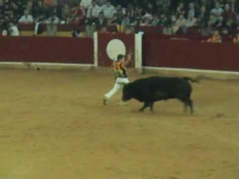concurso de recortes de toros zaragoza el pilar (12-10-08)