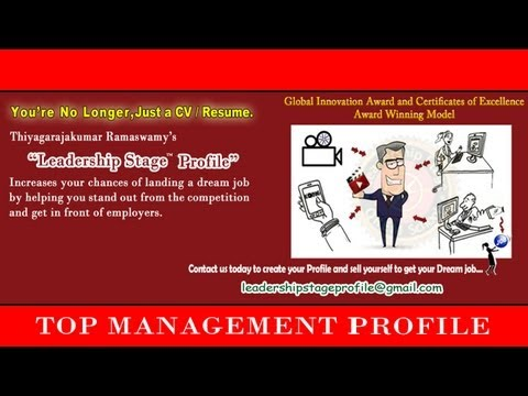 Leadership Stage (Dream Employment) System Profile  -  Top  Management Professional