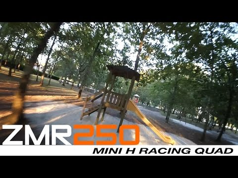 ZMR 250 - Crash session in the wood - UCPATYqetEInJplX6nHNh1qA
