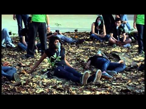 Voluntarios de Greenpeace realizan acción por los bosques