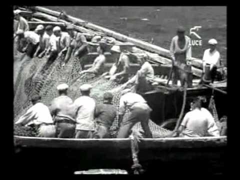 Carloforte - Mattanza dei tonni / Luglio 1955 [Istituto LUCE]