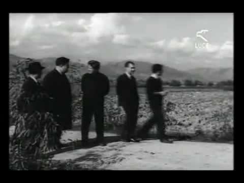 Coltivazione dei garofani in serra in Sardegna / 1962