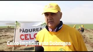 CELCO | Padurea CELCO, editia I