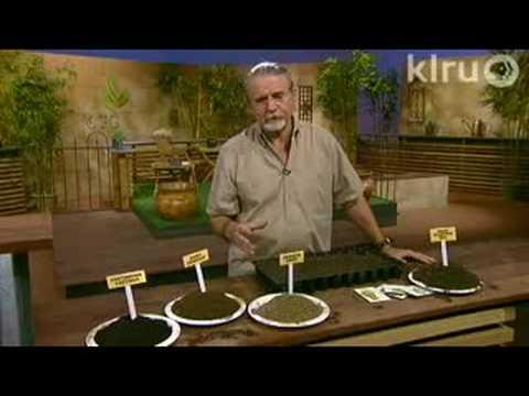 John Dromgoole starts seeds: Central Texas Gardener