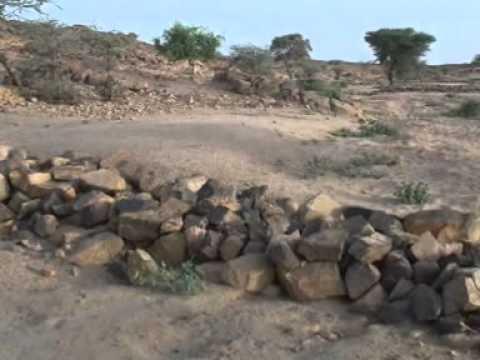 Difesa del territorio e tutela della biodiversità in Niger