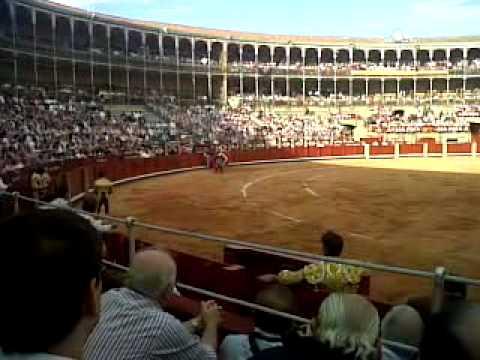 el fandi banderillas plaza de toros de salamanca