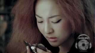 2NE1 vs. 1sagain (feat. Heenain) - Sick Of Being Hurt [Drokas Mash Up]