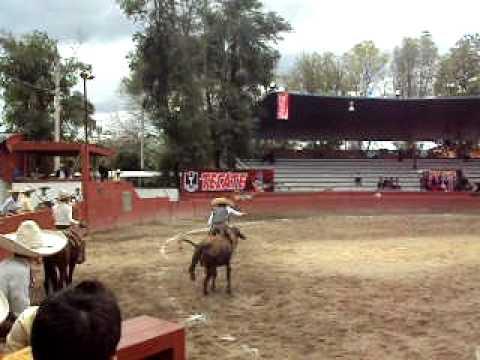 Jineteada de toro en estatal de Tlaxcala 2010