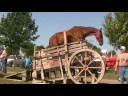 HORSE- POWERED GRAIN SEPARATOR
