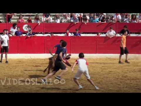 ALFARO vacas y vaquillas en la plaza, 15 agosto 2012