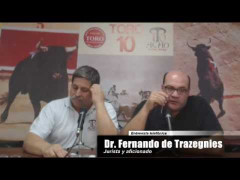 Toro Tendido 10 (11.05.13)