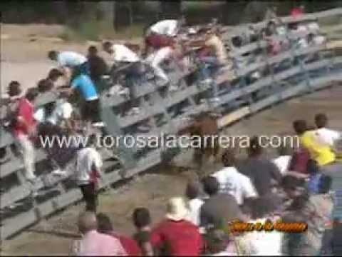 Encierros Collado Villalba 2005