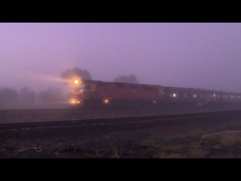V/line train in fog - Country passenger train at railroad level crossing / grade crossing - PoathTV