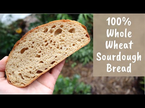 Easy and Delicious 100% Whole Wheat Sourdough (extended cold autolyse method)