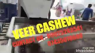Cashew Processing Plant - Veer Cashew Industries