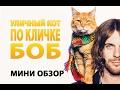 Уличный кот по имени Боб - Мини Обзор