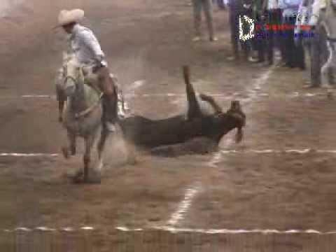 Congreso Nacional Charro Zacatecas, Dia 6