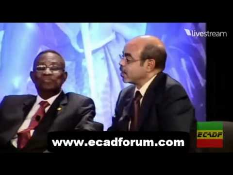 Ethiopian Journalist -  Abebe Gellaw protests against Meles Zenawi [must watch]