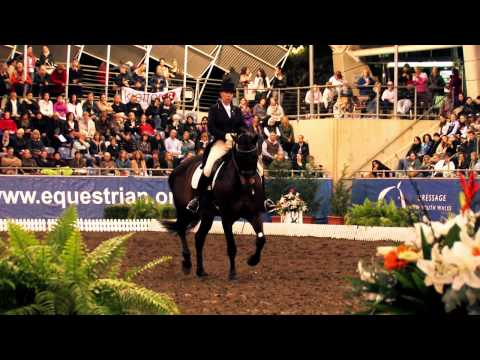Sydney CDI 2011 - Chantal Wigan and Ferero 6th in the Grand Prix Freestyle CDI***