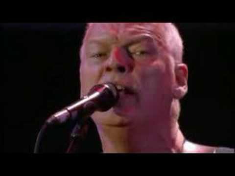 Pink Floyd - Comfortably Numb (Live 8)