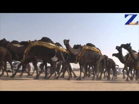 مسيرة منقية حمد بن علي الحذقين