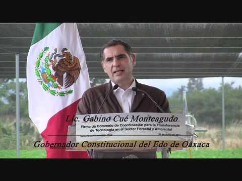 Acuerdan Gobierno de Oaxaca, Suecia y Fundación Harp transferencia de tecnología