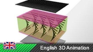 TFT / LCD Ekranlar nasıl çalışır? - 3 boyutlu animasyon