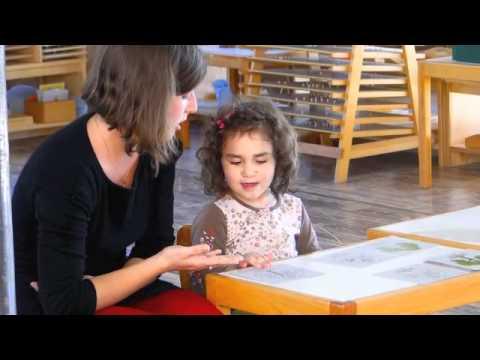 Montessori La Milpa - Casa de Niños