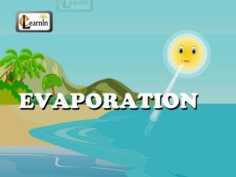 Evaporation -k9l0s5zVibo
