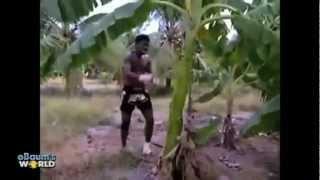 Video clip - Những clip ấn tượng nhất 2012 phần 1