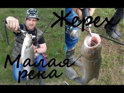 рыбалка с акельевым