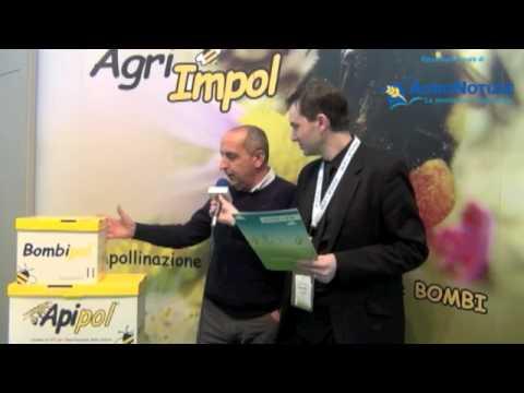 Cos'è l'Agricoltura Sostenibile - Agri Impol