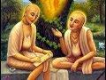 Srila Prabhupada ~ Sri Sri Sad Goswami Astakam