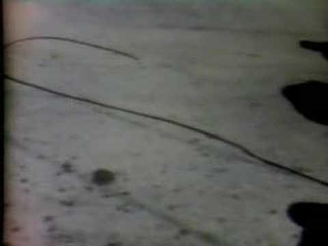 Tate Murder CBS 1969 Newscast