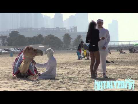 فيديو: اكثر من 4 ملايين مشاهدة لشاب يغري الفتيات بـ جمل في دبي