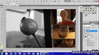 Adobe Photoshop CS5 Tutorial: Basic Editing