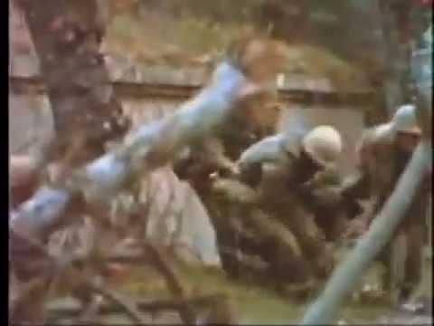 La musica en la guerra de VIETNAM, (con sus asesinatos)