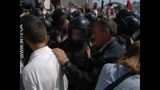 Драка с Беркутом на акции в защиту украинского языка