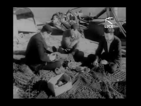L'arrivo dei Giuliani e degli Istriani a Fertilia - Sardegna / 1949 [Istituto LUCE]