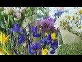 Цветы для благотворительной ярмарки в Челябинске