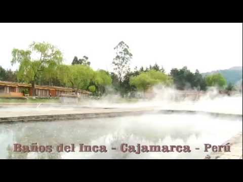 Foto propiedades curativas de ayahuasca