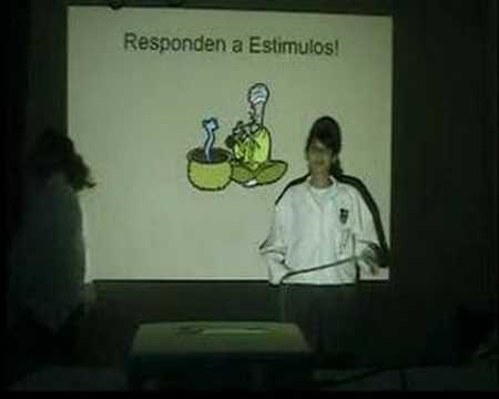 ReinO aNimAl y VeGeTAl ParTE 1