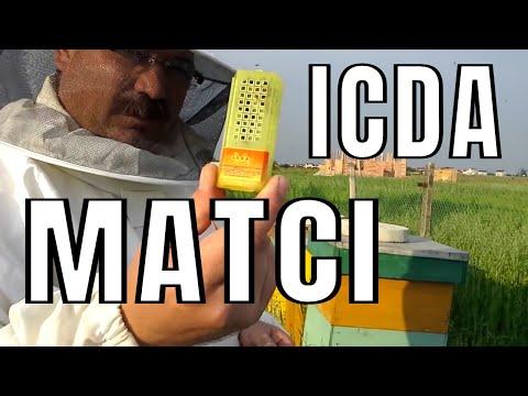Apicultura 2014 Matci de la ICDA