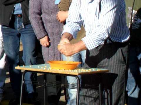 i discendenti italo-brasiliani in festa: il gioco del miglio