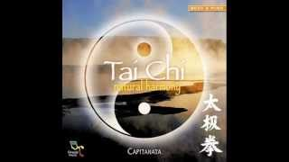 "A Beautiful NEW AGE Music album……."" TAI CHI "" !"