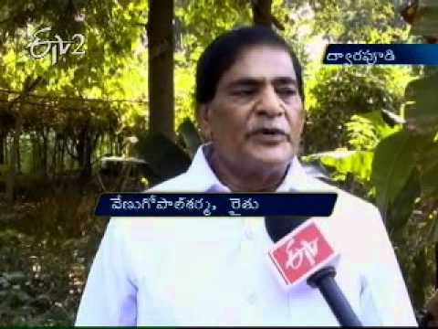 A farmer in Vizianagaram succeeds with Organic farming