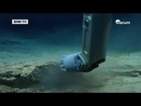 Life under the Sea - DW TV Part 1