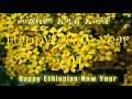Фрагмент с начала видео - Teddy Tadesse መልካም አዲስ አመት Happy Ethiopian New year 2011| Yedro Mezmur Official