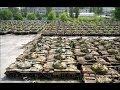 Новости Артемовска | Ополчением захвачена воинская часть Артемовска